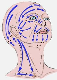 face massage and lymphatic drainage